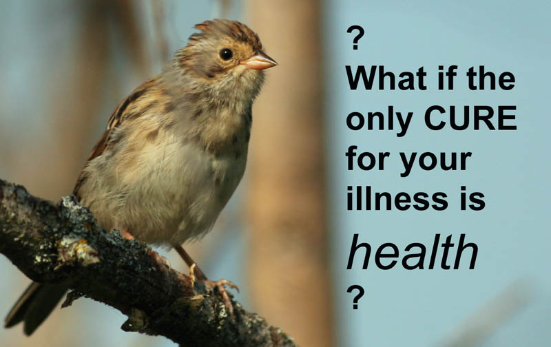 Why We Can't Cure | Healthicine
