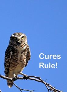 CuresRule-f