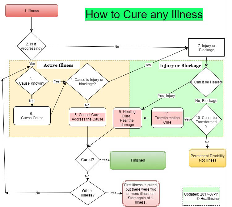 How to Cure Any Illness | Healthicine
